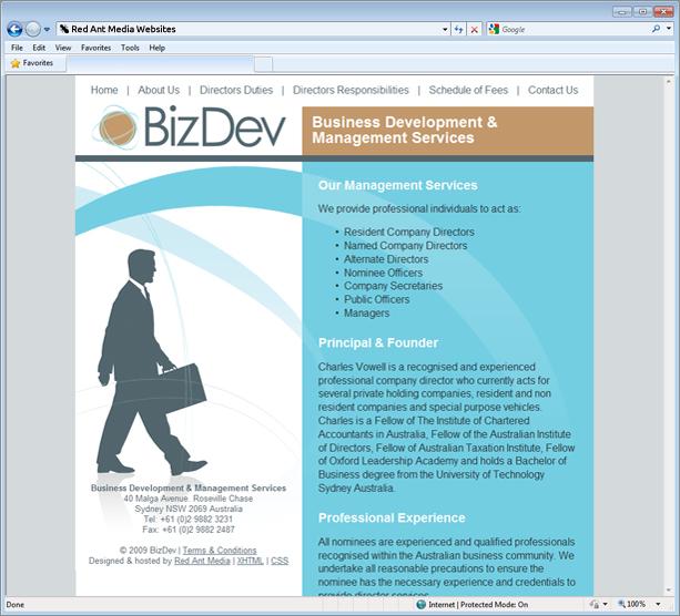Website Design for Biz Dev Management Services
