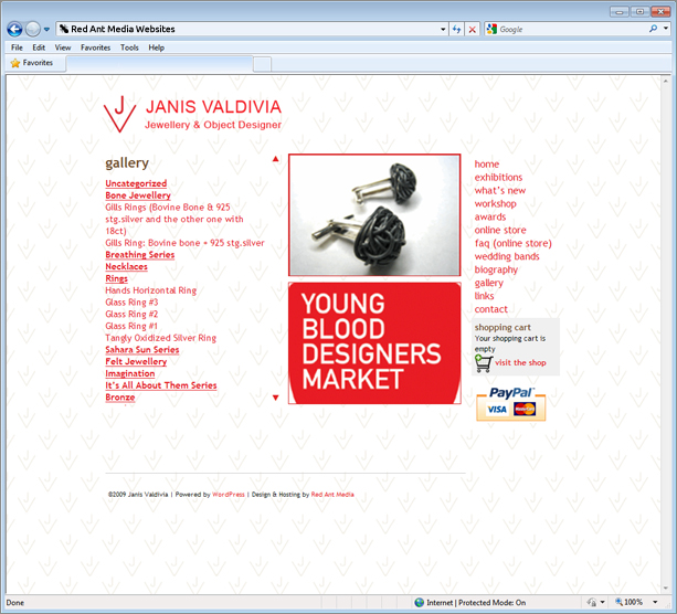Website design for Janis Valdivia gallery page