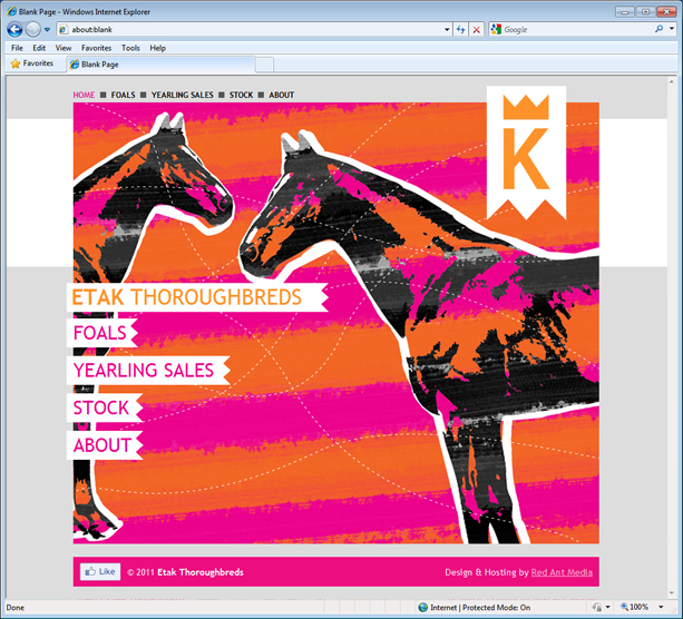 Home page design for Etak Thoroughbreds website