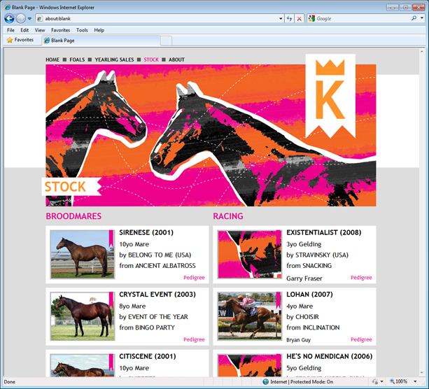 Stock listing page design for Etak Thoroughbreds website